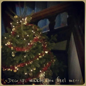 Dec 18: makes you feel merry #fmsphotoaday
