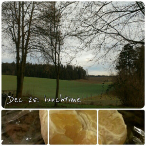 Dec 25: lunchtime .. a peeled orange on the way home .. #fmsphotoaday