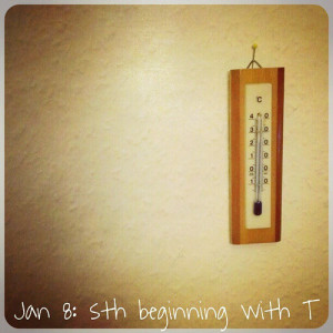 """Jan 8: something beginning with """"t"""".. #fmsphotoaday #thermometer"""